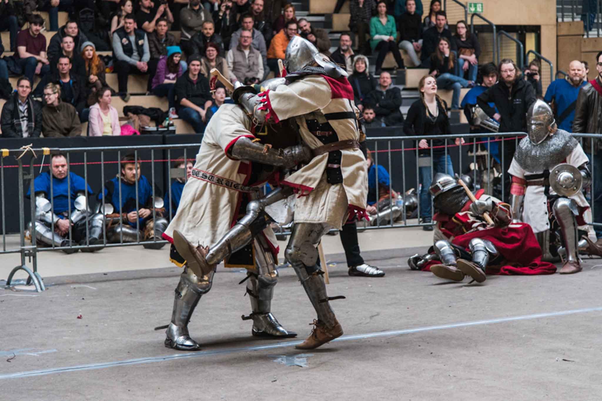 Deutsche Schwert- und Rossfechter e.V. _ Mittelalter Vollkontakt _ Buhurt _ Eisenliga _ Medieval Combat